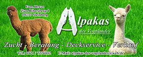 Alpakas des Vogtlandes
